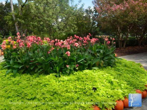 Beautiful garden at the Dallas Arboretum