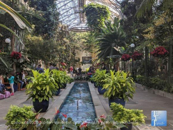 The US Botanical Garden in Washington DC