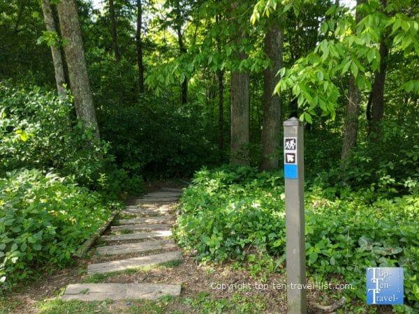 Blue trail at Jump Off Rock park in Western North Carolina