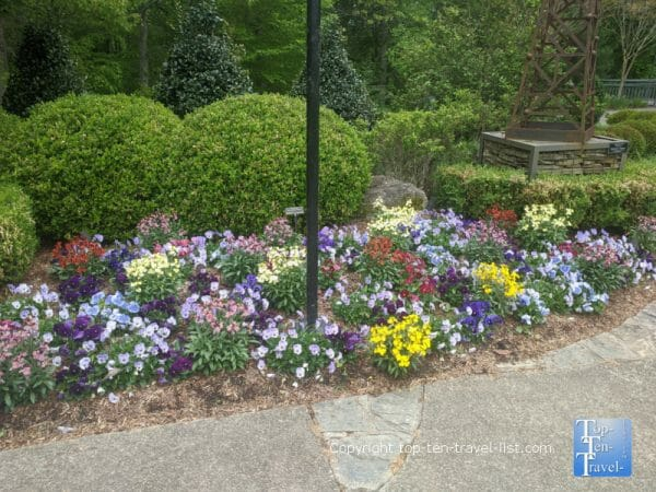 Colorful flower garden at the North Carolina Arboretum in Asheville, North Carolina