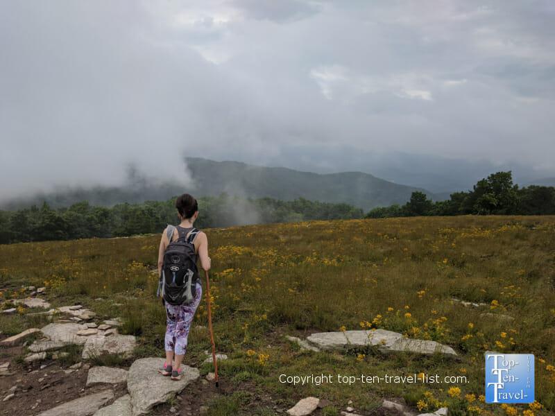 Enjoying the view on the summit of Bearwallow Mountain in Western North Carolina