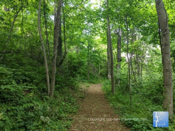 Peaceful nature hike at Collier Nature Preserve in Arden, North Carolina