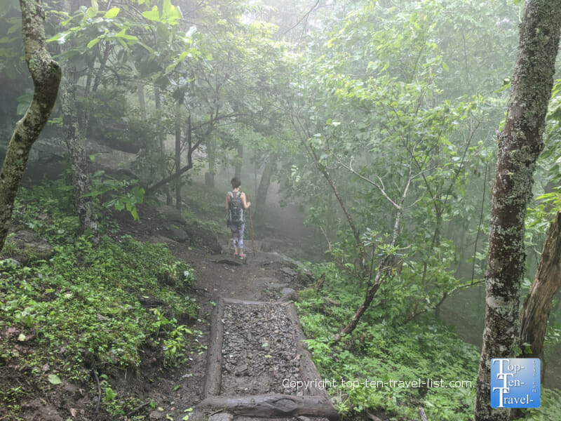 Hiking the Bearwallow Mountain trail in Western North Carolina