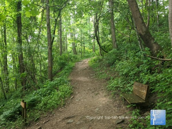 Secluded hike at Collier Cove Nature Preserve in Arden, North Carolina