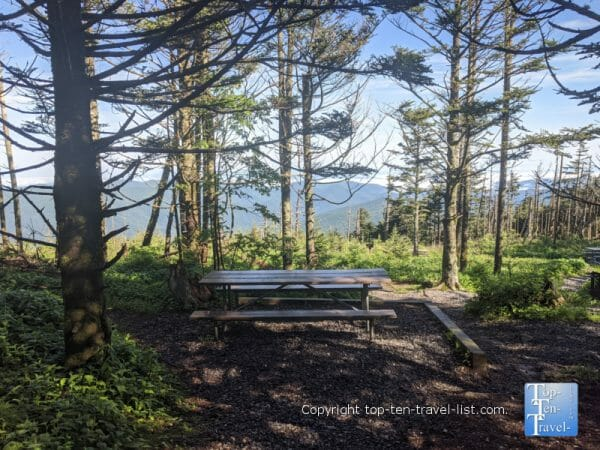 Scenic picnic area at Mt. Mitchell State Park in Western North Carolina