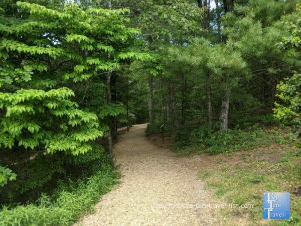 Leafy hiking trail at the North Carolina Arboretum in Asheville, North Carolina