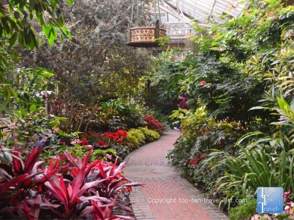 Tropical oasis at Longwood Gardens in Pennsylvania