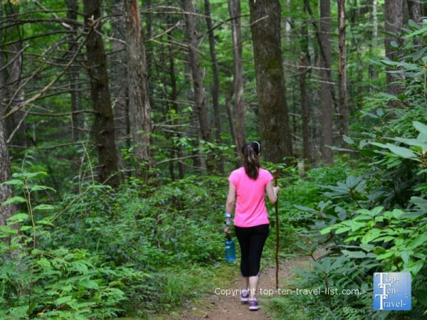Hiking the Baskins Creek trail in the Great Smoky Mountains in Tennesee