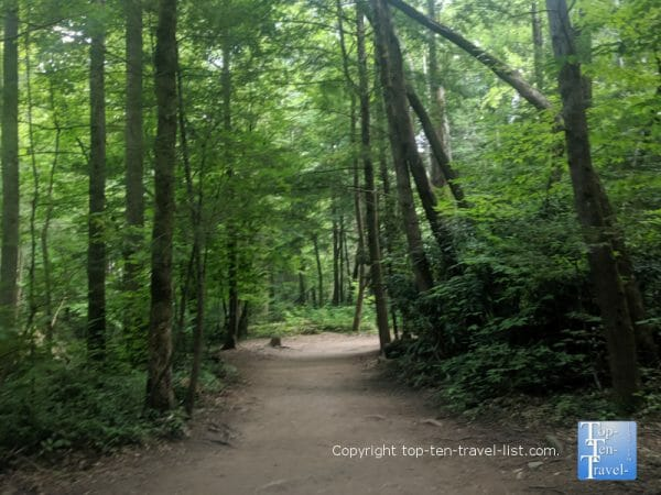 Peaceful hiking trail to Cataract Falls in the Great Smoky Mountains National Park in Tennessee