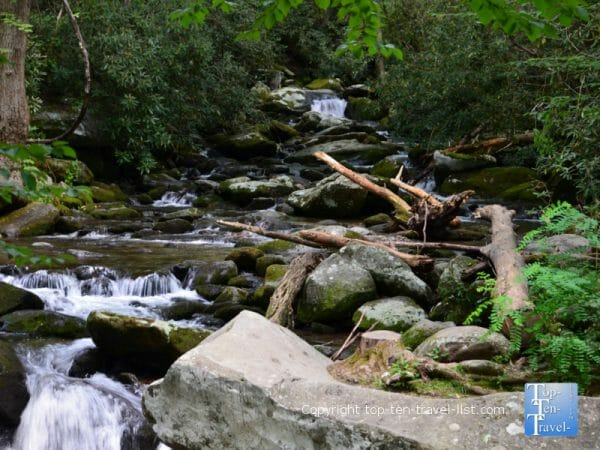 Gorgeous creek along the Roaring Fork Motor Nature trail in the Great Smoky Mountains in Tennessee