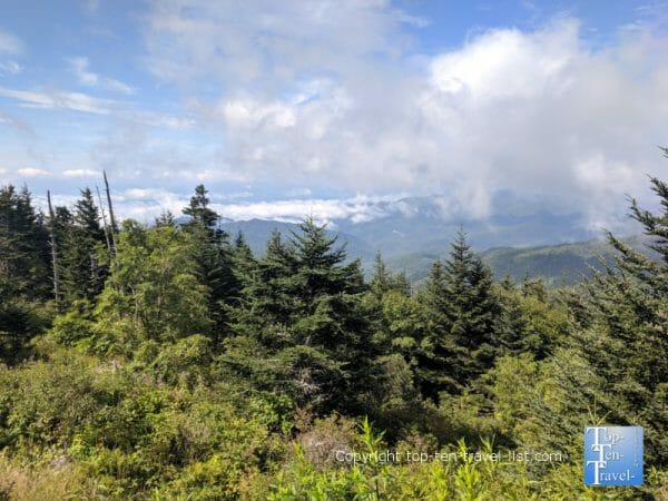 Pretty mountain scenery at Clingman's Dome in the Great Smoky Mountains