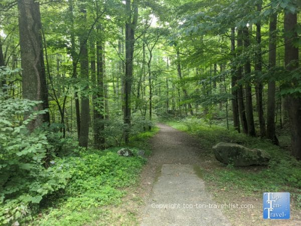 Quiet walkway in the Great Smoky Mountains National Park in Tennessee