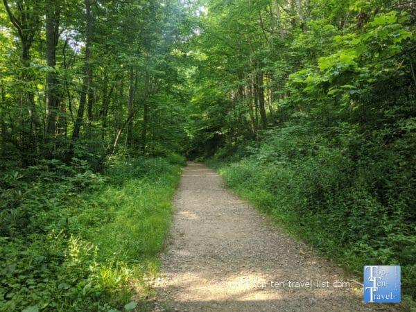 Easy hike to Roaring Fork Falls in Burnsville, North Carolina