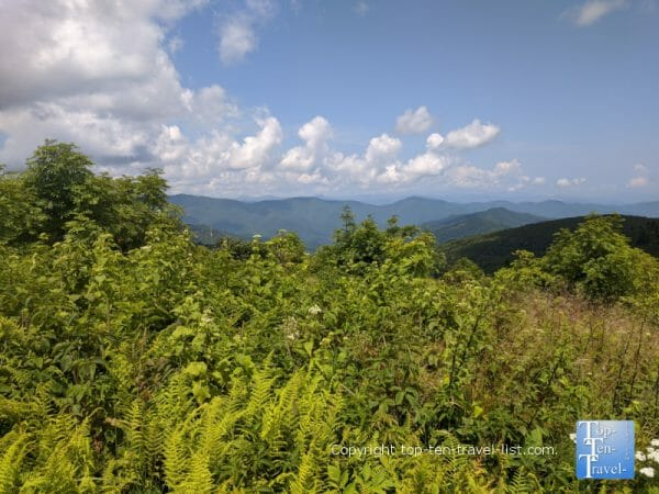 Gorgeous mountain scenery along the Black Balsam Knob trail in Western North Carolina