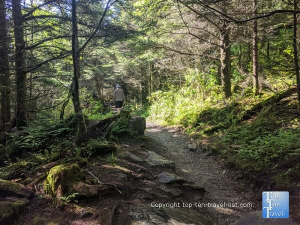 Hiking the Balsam Nature trail at Mt. Mitchell State Park in Western North Carolina