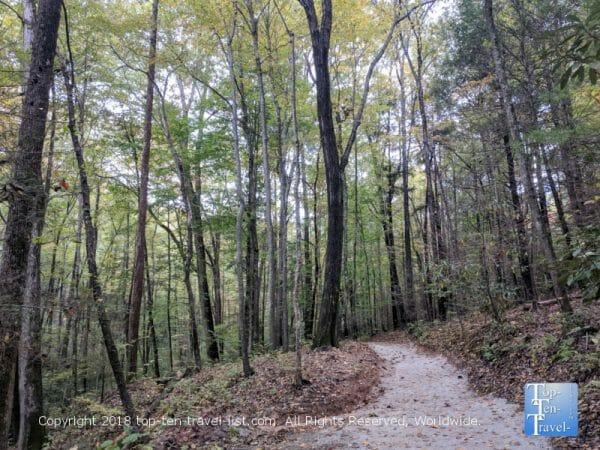 Peaceful secluded hike to Tom's Creek waterfall in Western North Carolina