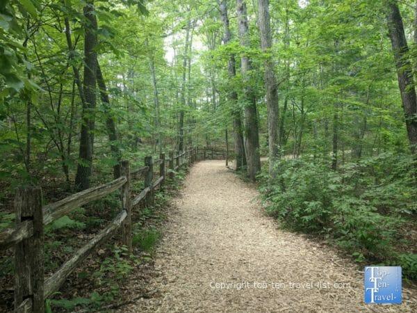 Nature trail at the North Carolina Arboretum in Asheville, NC