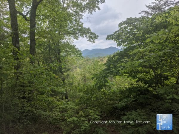Pretty mountain view along the nature trail at the North Carolina Arboretum in Asheville, NC