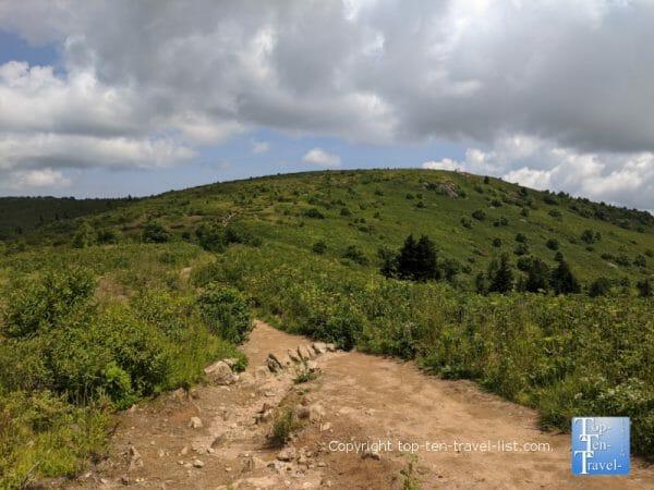 Hiking the Black Balsab Knob trail in Western North Carolina