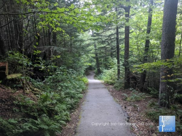 Paved trail to the Devil's Courthouse summit along the Blue Ridge Parkway