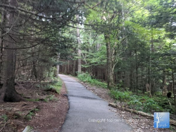 Hiking trail to Devil's Courthouse on the Blue Ridge Parkway in North Carolina
