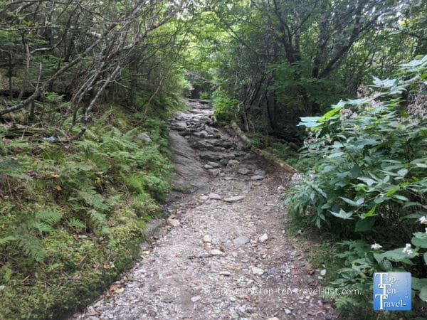 Rocky path up to Devil's Courthouse summit on the Blue Ridge Parkway in North Carolina