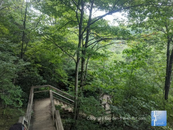 Staircase climb to Lower Graveyard Field Falls along the Blue Ridge Parkway in North Carolina