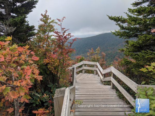 Fall color along the Rough Ridge trail along the Blue Ridge Parkway in Western North Carolina