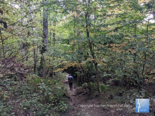 Hiking the Rough Ridge trail on the Blue Ridge Parkway in Western North Carolina