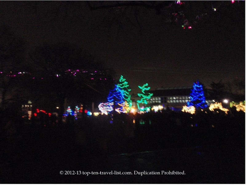 Attend Holiday Magic at Brookfield Zoo