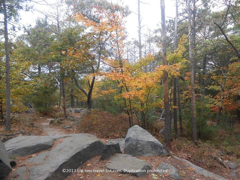 Hiking amidst beautiful Massachusetts forests and marshes at Blue Hills Reservation