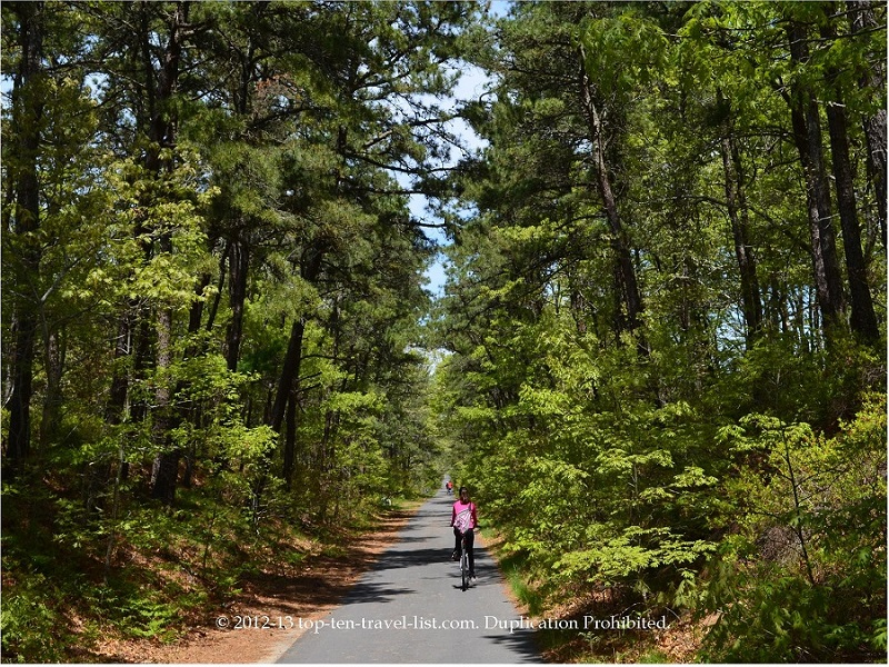Biking along the beautiful tree-lined Cape Cod Rail Trail