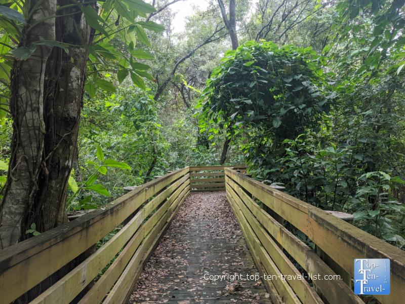 Take a quaint stroll around the tropical plants & wterfalls of Sunken Gardens