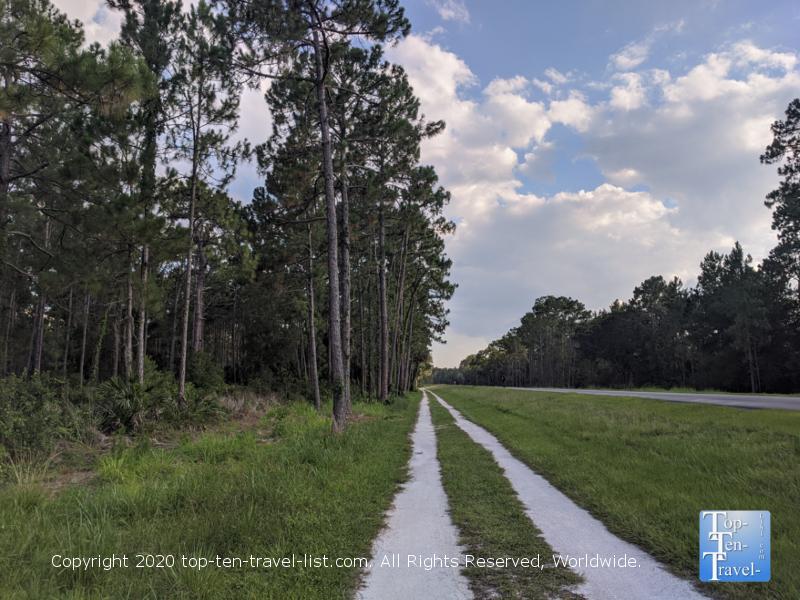 Bike the pine tree lined Flatwoods Park loop trail