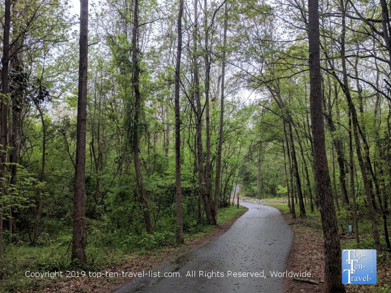 Take a nature walk at Lake Conestee Preserve