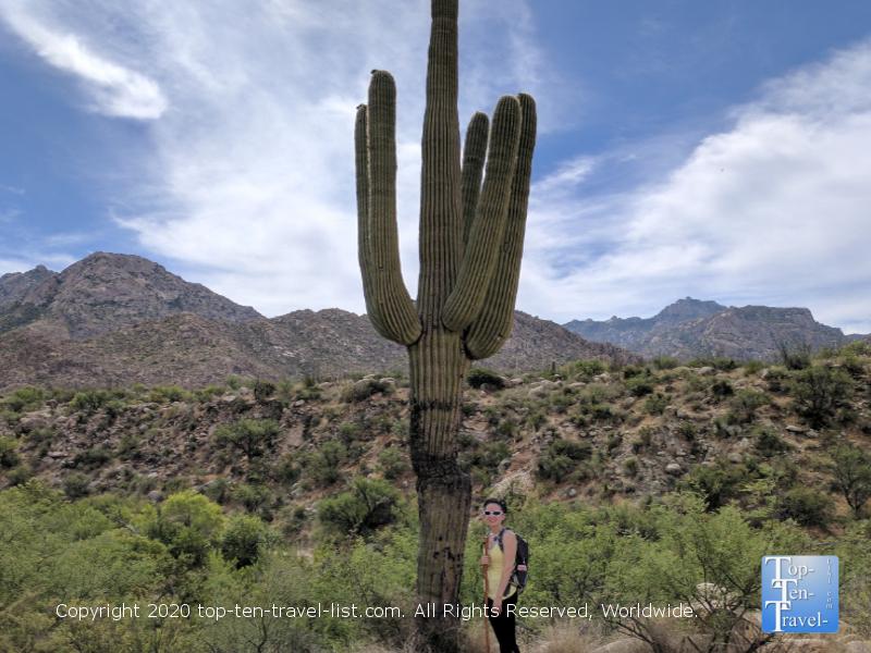 Take a beautiful hike at Catalina State Park