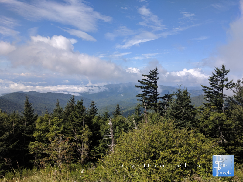Enjoy 360 degree views at Clingman's Dome