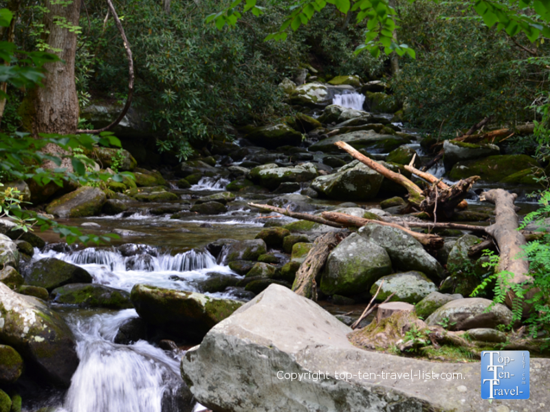 Take a cruise along the Roaring Fork Motor Nature Trail